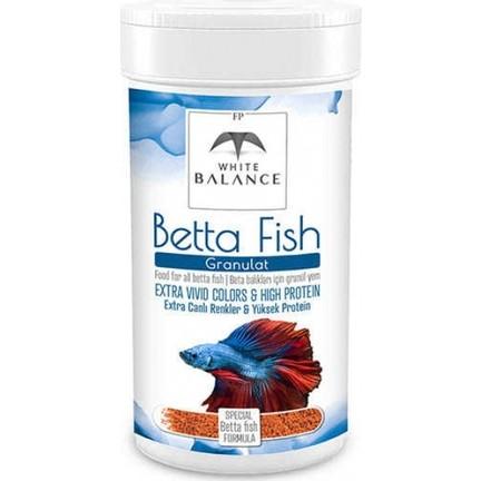 beta balığı bakımı nasıl olmalı